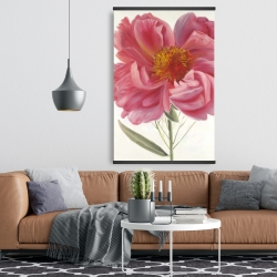 Magnetic 28 x 42 - Pink peony flower