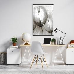 Magnetic 20 x 30 - Three white tulips