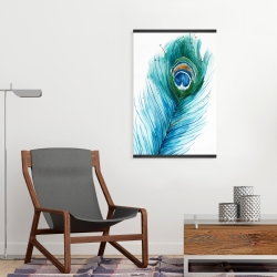 Magnetic 20 x 30 - Long peacock feather