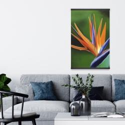 Magnetic 20 x 30 - Bird of paradise flower