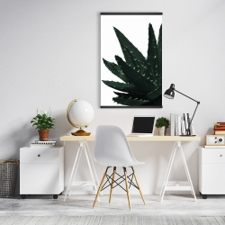 Magnetic 20 x 30 - Aloe plant