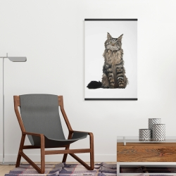 Magnetic 20 x 30 - Maine coon cat