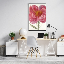 Magnetic 20 x 30 - Pink peony flower