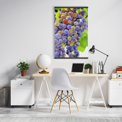 Magnetic 20 x 30 - Bunch of grapes