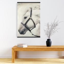 Magnetic 20 x 30 - Darius the white horse