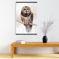 Magnetic 20 x 30 - Barred owl