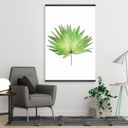 Magnetic 28 x 42 - Petticoat palm