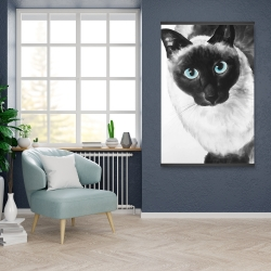Magnetic 28 x 42 - Blue eyes siamese cat