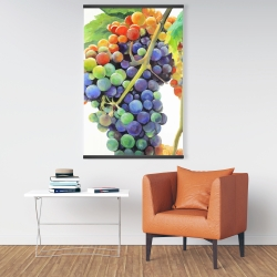 Magnetic 28 x 42 - Colorful bunch of grapes