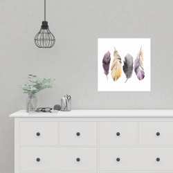 Poster 16 x 16 - Colorful feather set