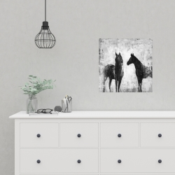 Poster 16 x 16 - Black and white horses