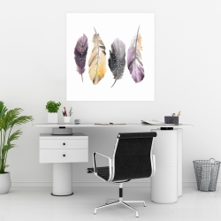 Poster 30 x 30 - Colorful feather set