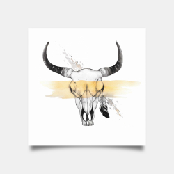 Poster 30 x 30 - Cow skull with feather