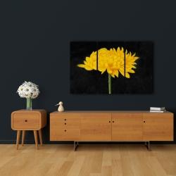 Canvas 24 x 36 - Chrysanthemum