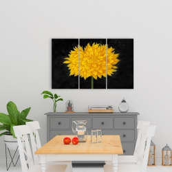 Canvas 24 x 36 - Yellow chrysanthemum