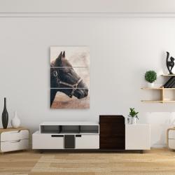 Toile 24 x 36 - Gallopin le cheval brun