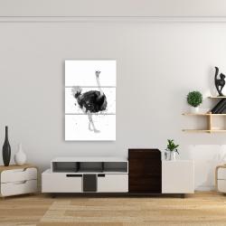 Canvas 24 x 36 - Proud ostrich