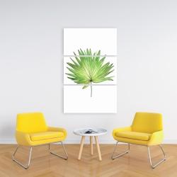 Canvas 24 x 36 - Petticoat palm