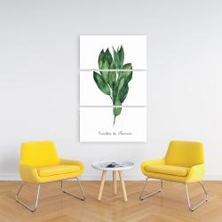 Canvas 24 x 36 -  bay leaves bundle - fr