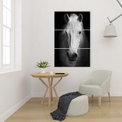 Canvas 24 x 36 - Monochrome horse