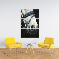 Canvas 24 x 36 - Horse with harness