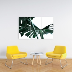 Canvas 24 x 36 - Monstera deliciosa