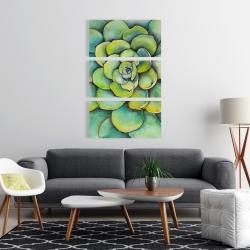 Canvas 24 x 36 - Watercolor succulent plant
