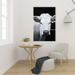 Canvas 24 x 36 - White cow