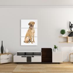 Canvas 24 x 36 - Labrador retriever