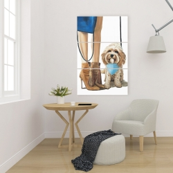 Canvas 24 x 36 - Fashionable cavoodle dog