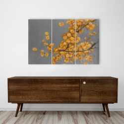 Canvas 24 x 36 - Golden wattle plant with pugg ball flowers
