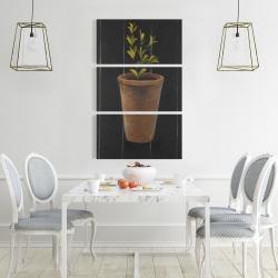 Canvas 24 x 36 - Plant of marjolaine