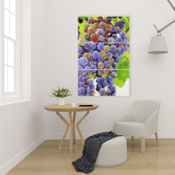 Canvas 24 x 36 - Bunch of grapes