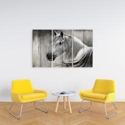Canvas 24 x 36 - Rustic horse