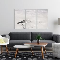 Canvas 24 x 36 - Semipalmated sandpiper