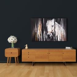 Canvas 24 x 36 - White horse in the dark