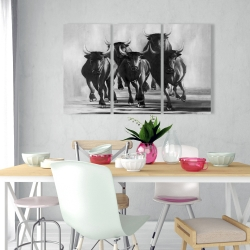 Canvas 24 x 36 - Group of bulls at galops