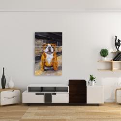 Canvas 24 x 36 - Smiling bulldog