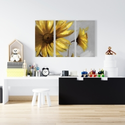 Canvas 24 x 36 - Mountain arnica flowers