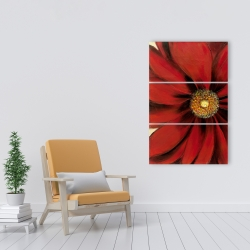 Canvas 24 x 36 - Red daisy
