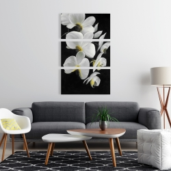 Canvas 24 x 36 - Beautiful orchids