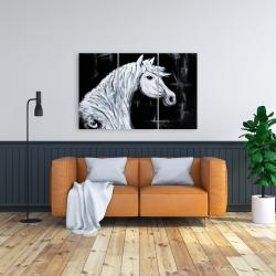 Canvas 24 x 36 - Horse profile view