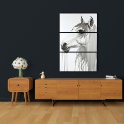 Canvas 24 x 36 - Beautiful white horse