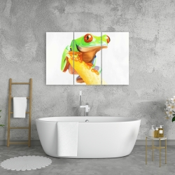 Canvas 24 x 36 - Curious red eyed frog