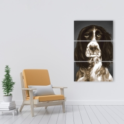 Canvas 24 x 36 - Brown english springer spaniel