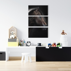 Canvas 24 x 36 - Loneliness horse