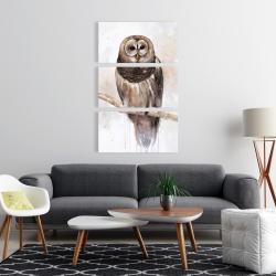 Canvas 24 x 36 - Barred owl
