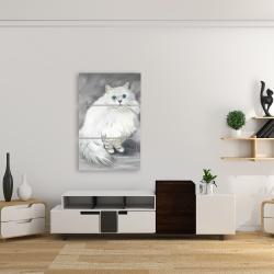 Canvas 24 x 36 - Chinchilla persian cat