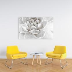 Canvas 24 x 36 - Delicate white chrysanthemum