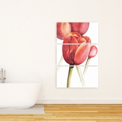 Canvas 24 x 36 - Blossoming tulips closeup